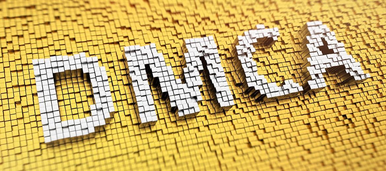 Despre DMCA şi firmele de Găzduire Web